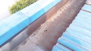 Seng talang yang sudah karatan dan berlubang , bersedia terganti ke talang air fiberglass