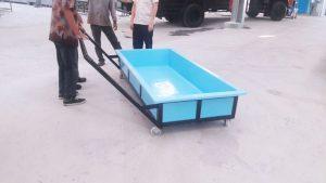 bak lory fiberglass