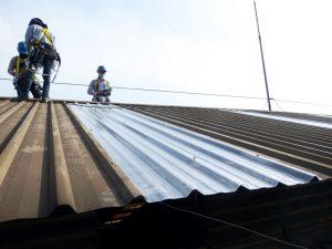 Atap fiberglass terpasang  pada tempat nya berjejer dengan atap zincalume