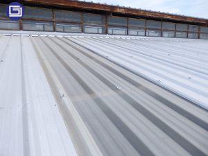 Skyroof penerang fiberglass terpasang di pabrik, memberikan hemat biaya listrik, menggunakan cahaya matahari gratis.